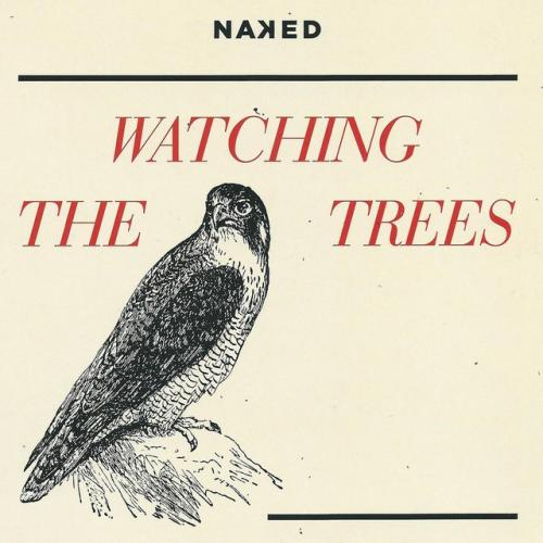 Watching-the-trees.jpg
